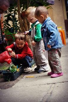 Kertészkedés a családi bölcsiben