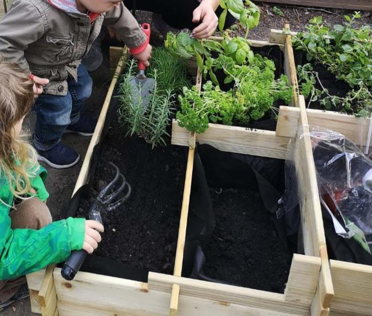 Kertészkednek a gyerekek a családi bölcsiben